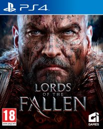 Lords of the Fallen jaquette 2