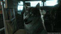 metal gear solid v the phantom pain dd the wolf 005