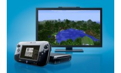 minecraft wii u screenshot