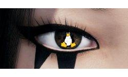 Mirror Edge Oeil DICE Linux