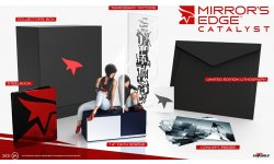Mirror s edge catalyst collector