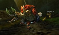 Monster Hunter 4 Ultimate 05 06 2014 screenshot (19)