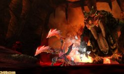 monster hunter 4 ultimate  (18)