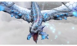 Monster Hunter Frontier G 01 08 2013 head