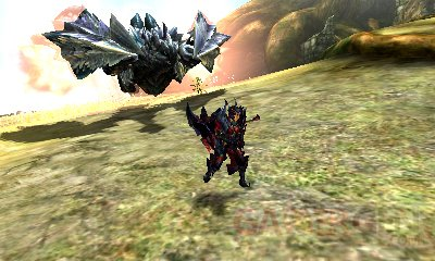 Monster Hunter XX Capcom (10)