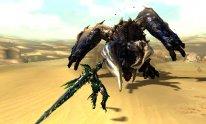 Monster Hunter XX Capcom (11)