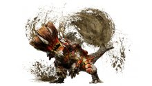 Monster Hunter XX Capcom (16)