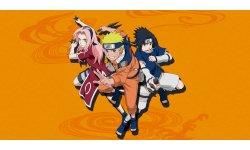Naruto Shippuden Ultimate Ninja Blazing image