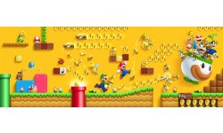 New Super Mario Bros 2 15.08.2013.