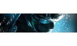 Ninja Gaiden vignette ban image