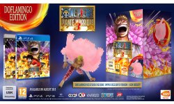 One Piece Pirate Warriors 3 edition collector bonus (1)