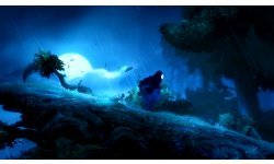 Ori and the Blind Forest 2014 09 17 14 003