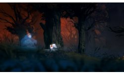 Ori and the Blind Forest 2014 09 17 14 005