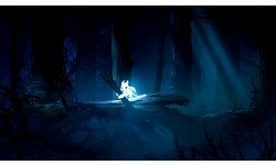Ori and the Blind Forest 2014 09 17 14 006