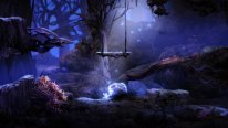 Ori and the Blind Forest 2014 09 17 14 009