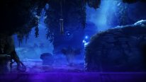 Ori and the Blind Forest 2014 09 17 14 012