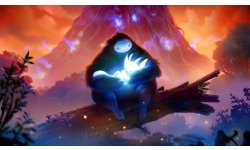 Ori and the Blind Forest Definitive Edition 01 03 2016 screenshot (12)