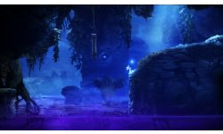Ori and the blind forest E3 2014 captures 10