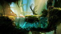 Ori and the blind forest E3 2014 captures 1