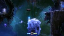 ori blind forest screenshot 21 01 2015  (2)