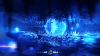 ori blind forest screenshot 21 01 2015  (3)