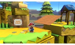 Paper Mario Color Splash head
