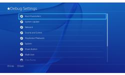 PlayStation 4 ps4 debug interface 22.04.2014  (4)