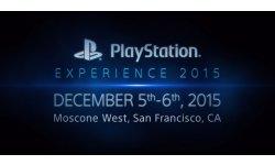 PlayStation Experience 2015 logo head