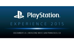 PlayStation Experience 2015 logo