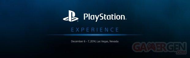 PlayStation Experience logo