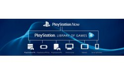 PlayStation Now 07 01 2014 pic