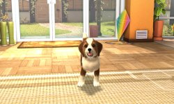 playstation vita pets 001