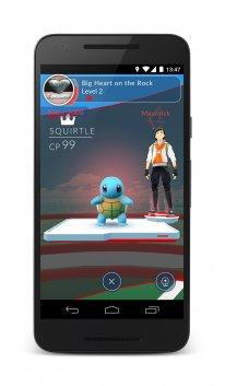 Pokémon Go (12)