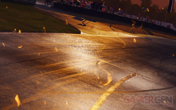 Project CARS 23.07.2014  (2)