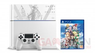 PS4 collector Sword Art Online (4)