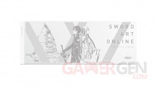 PS4 collector Sword Art Online (5)