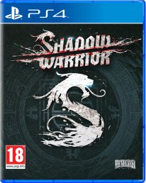 Shadow Warrior   pack 2D PS4 1406122014