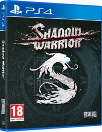 Shadow Warrior   pack 3D PS4 1406122015