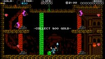 Shovel Knight Plague of Shadows 3