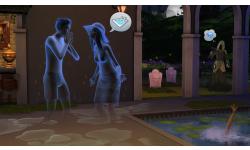 Sims43