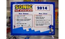 Sonic Nuremberg 01 02 2014 pic