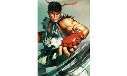 Street Fighter V  (22)
