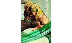 Street Fighter V  (23)