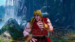 Street Fighter V (24)