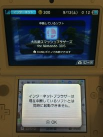 Super Smash bros 3DS miiverse internet 2