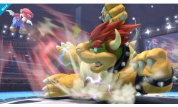 Super Smash Bros comparaison 3DS Wii U Bowser 23.07.2013 (13)