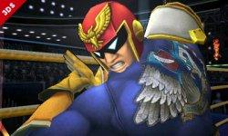 Super Smash Bros Falcon (18)