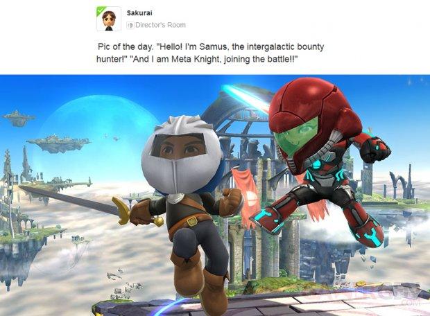 Super Smash Bros Mii