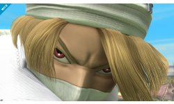Super Smash Bros. Sheik 09.04 (6)