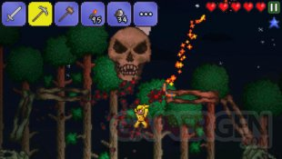 terraria screenshot ios iphone  (2)